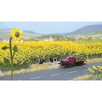 Flowers Sunflowers Busch 6003 Yellow