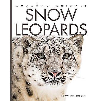 Snow Leopards (Amazing Animals)