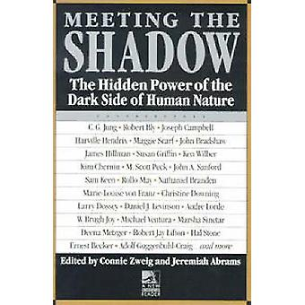 Meeting the Shadow - The Hidden Power of the Dark Side of Human Nature