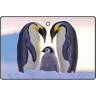 Emperor Penguins In Love Car Air Freshener
