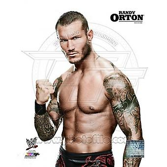Randy Orton Posed Sports Photo (8 x 10)
