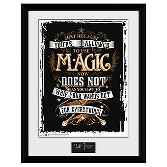 Harry Potter Picture Wand Out 16 x 12