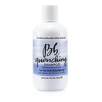 Bumble And Bumble Quenching Shampoo (For the Terribly Thirsty Hair) - 250ml/8.5oz