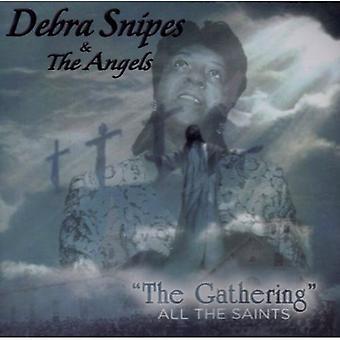 Debra Snipes & engle - indsamling: All Saints [CD] USA import