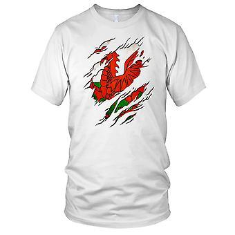 Welsh Flag Dragon Cymru Ripped Effect Design Kids T Shirt