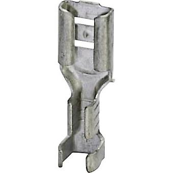 Phoenix Contact 3240158 Blade receptacle Connector width: 4.8 mm Connector thickness: 0.8 mm 180 ° Not insulated Metal