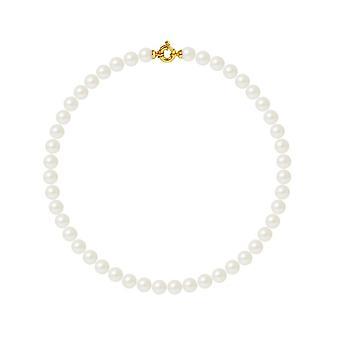 Collier ras du cou Femme Perles de culture d'eau douce Blanches 10 mm AA et Fermoir Or jaune 750/100