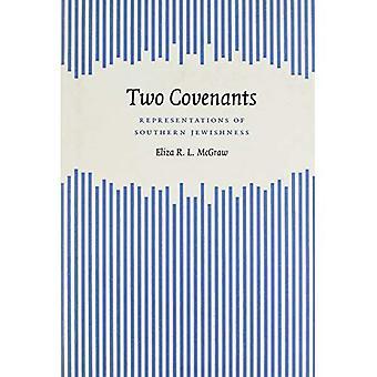 Dos pactos: Representaciones de judeidad meridional (sur estudios literarios)