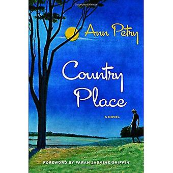 Country Place: A Novel