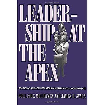 Leadership all'apice: politici e amministratori dei governi locali occidentali