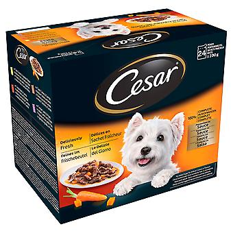 Cesar Pouch Deliciously Fresh Favourites In Sauce 24x100g (Pack of 2)