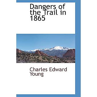 Gefahren des Weges im Jahre 1865 von Young & Charles Edward