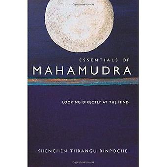 Essentials av Mahamudra: tittar direkt på sinnet