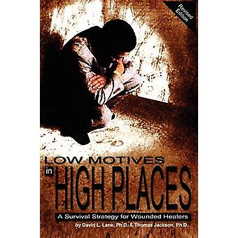 Low Motives in High Places A Survival Strategy for Wounded Healers by Lane & David L.