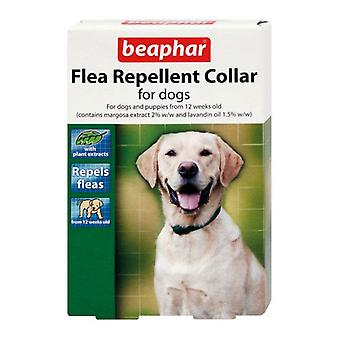 Collar repelente de pulgas perro beaphar