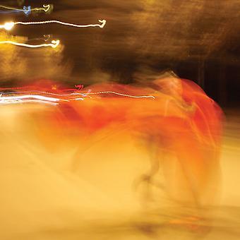 William Basinski - A Shadow in Time [Vinyl] USA import