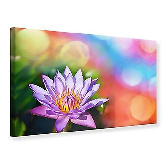 Canvas Print Colored Lotus