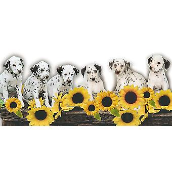 Puppies and Sunflowers Poster Print by Patrick Hoenderkamp