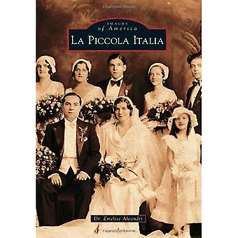 La Piccola Italia (Images of America (Arcadia Publishing))
