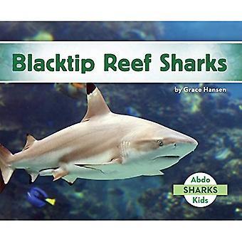 Requins pointes noires (Set 2 de requins)