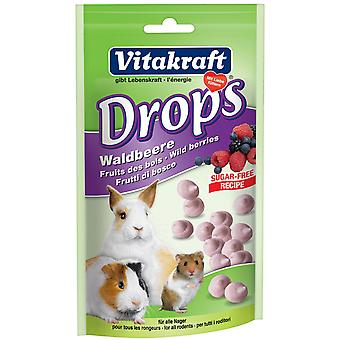 Vitakraft Small Animal Sugar Free Wild Berry Drops 75g (Pack of 9)