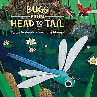 Buggar från huvud till svans av Stacey Roderick - 9781771387293 bok