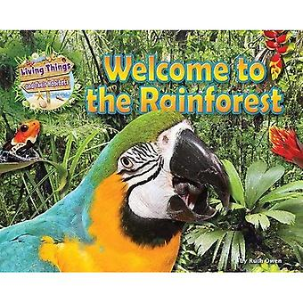 Welcome to the Rainforest (Living Things and Their Habitats)