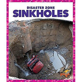 Sinkholes by Vanessa Black - 9781620315651 Book