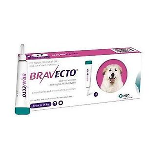 Bravecto Topical For Dogs 40-56 kg