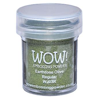 Wow! Embossing Powder 15Ml Olive Wow Wj03r