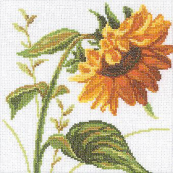 Sunflowers Counted Cross Stitch Kit 8