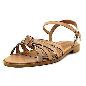 Coach Womens Sophia Open Toe Casual Strappy Sandals