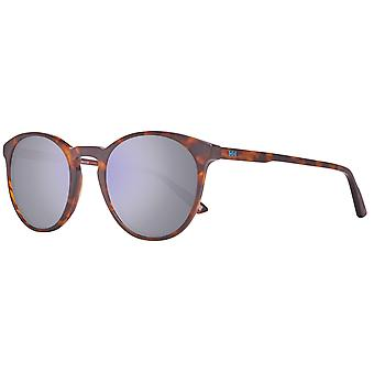 Helly Hansen ladies round Sunglasses brown