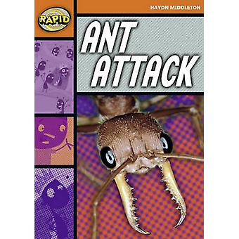 Rapid Stage 4 Set B Ant Attack Series 1 by Haydn Middleton