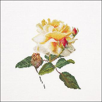 Release On Aida Counted Cross Stitch Kit-9.75