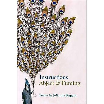 Instruktioner - eländig och rykande av Julianna Baggott - 9780809335732 B