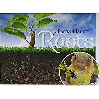 Roots (Parts of a Plant)