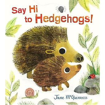 Say Hi to Hedgehogs! by Jane McGuinness - 9781406374605 Book