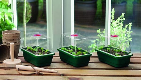 Mini High Dome Propagator Set of 3 Home Planting Gardening
