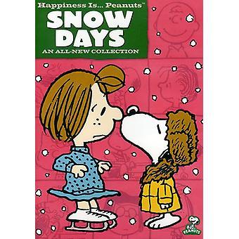 Peanuts - Snow Day [DVD] USA import
