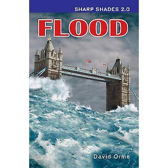 Hochwasser - 9781781279809 Buch