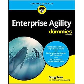 Enterprise Agility for Dummies