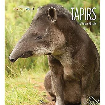 Tapirs (vie sauvage)