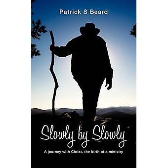 Slowly by Slowly by Beard & Patrick S