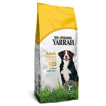 Yarrah Dog food with corn and chicken bio (Dogs , Dog Food , Dry Food)