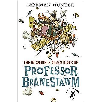 Die unglaublichen Abenteuer des Professor Branestawm (ein Papageientaucher-Buch)