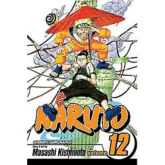 Naruto: v. 12 (Naruto)