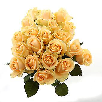beautiful yellow bouquet of roses, big | Height: 60 cm