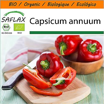 Saflax - Garden in the Bag - 20 seeds - Organic - Sweet Pepper - California Wonder Red - BIO - Poivron - California wonder - Rouge - BIO - Peperone - California Wonder - Red - Ecológico - Pimiento - California Wonder - Rojo - Paprika - California Wonder - Rot