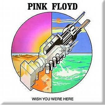 Pink Floyd Wish You Were Here (graphic) fridge magnet
